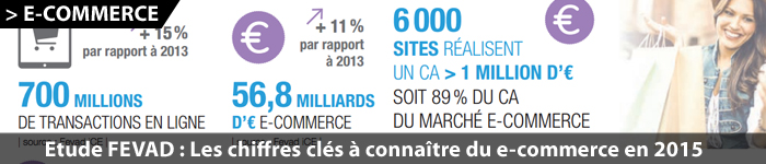 Marché du e-commerce en France en 2015