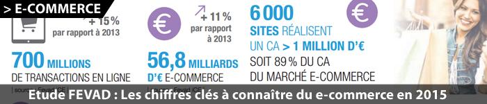 Marché du e-commerce en France en 2015